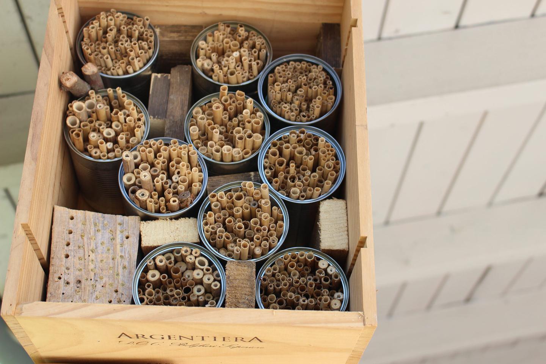 Hausgarten-23 Wildbienen-Nisthilfen